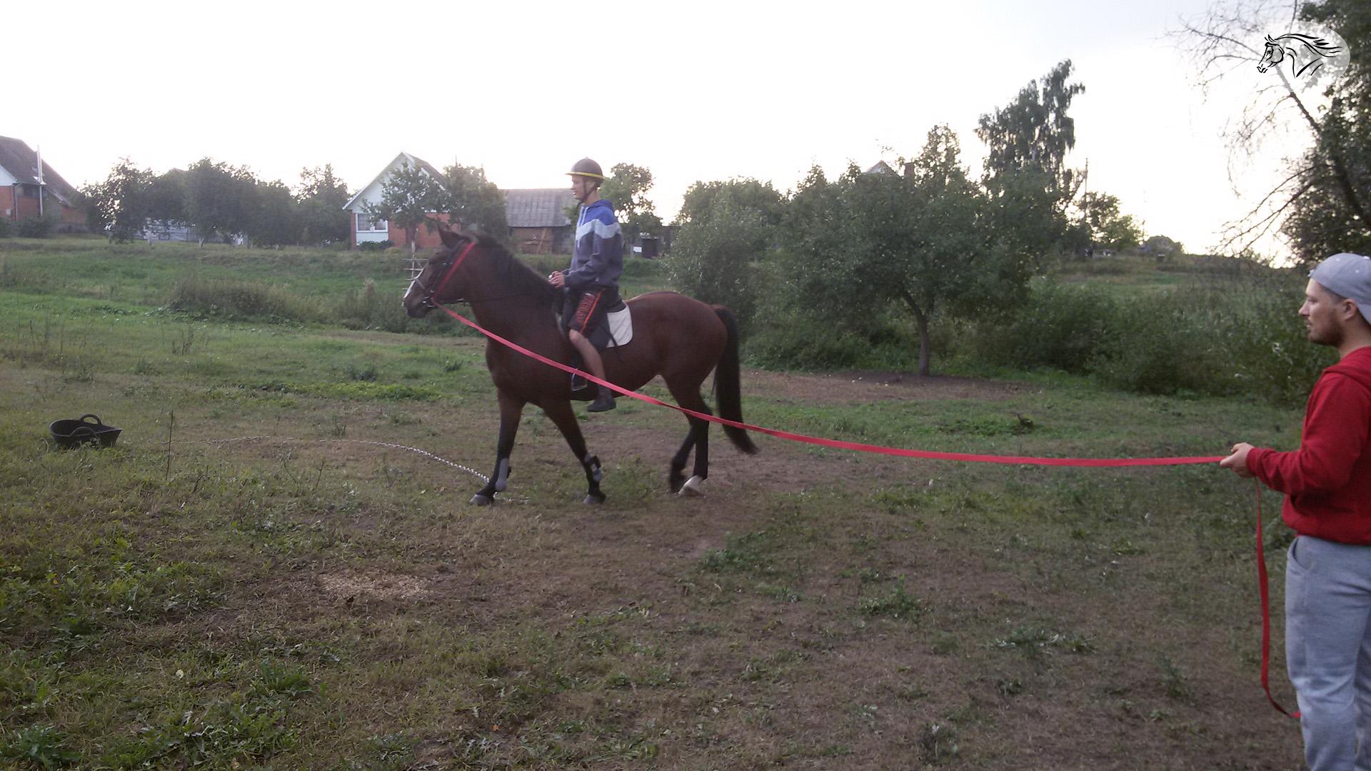 Paslauga - Pasijodinėjimas žirgais